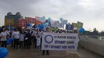 Sağlıkçılar Taşköprü de diyabet yürüyüş yaptı