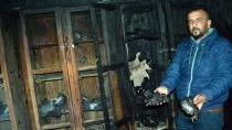 70 Güvercini Yakarak Telef Ettiler!