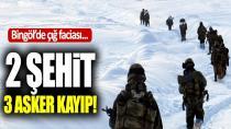 Operasyondaki Askerlerin Üzerine Çığ Düştü: 2 Şehit, 3 Asker Kayıp