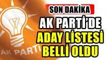AK Parti milletvekili adayları belli oldu!