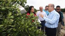 Vali Demirtaş: ''Akdeniz Meyve Sineğine Karşı Tüm Tedbirleri Aldık''