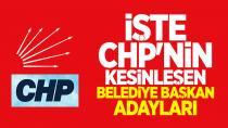 CHP'nin Adana Adayı Zeydan Karalar Oldu!