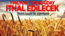 1 milyon ton buğday ithal edilecek...