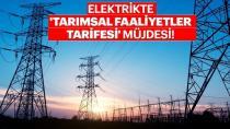 Elektrikte 'tarımsal faaliyetler tarifesi' başlıyor!