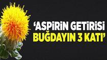 """""""Aspirin getirisi buğdayın 3 katı"""""""