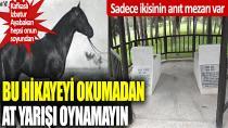 Sadece bu iki atın anıt mezarı var!