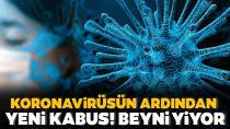 Bir bu eksikti! Beyin yiyen amip Türkiye'de de var...