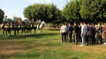 Adana'da Atlı birlikler göreve başladı...