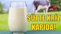 Fiyat değişmeyince süt sığırları kesime gidiyor...