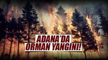 Pozantı'da orman yangını...