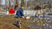 Büyükşehir kuzey ilçelerinde karla mücadeleyi sürdürüyor